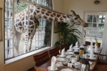 GiraffeManorNairobiKenya