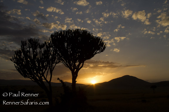 Sunrise in the Mara-4788