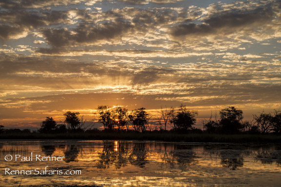 Sunset in the Okavango-9175