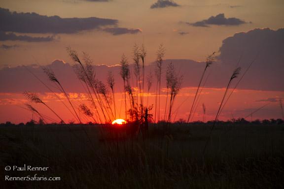 Sunset in The Okavango Delta-0259