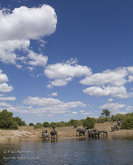 Under the Blue Botswana Sky-2454