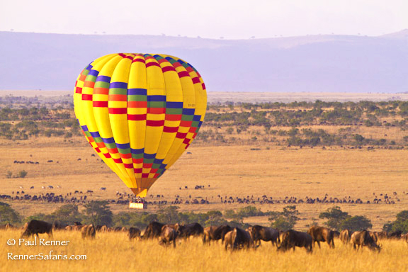 Hot Air Balloon in Mara-8616
