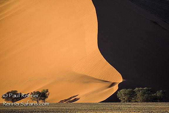 Namibia Sand Dunes-0308
