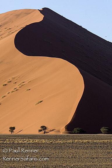 Namibia Sand Dunes-0370