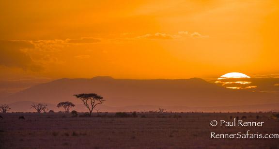 Amboseli Sunset-3025