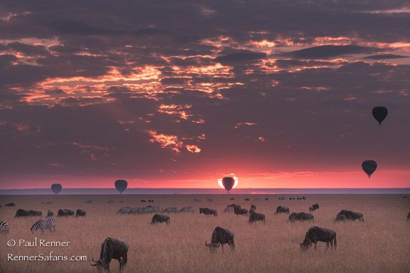 Hot Air Baloons Over Migration-3423-2