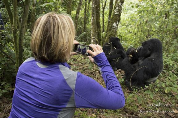 Tammy Photographing Gorillas-7780