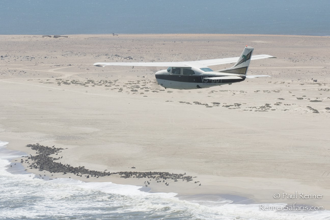 Flying Along Skeleton Coast, Namibia-2746