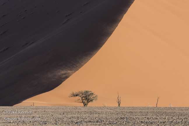 Sand Dunes in Namib Desert, Namibia-1971