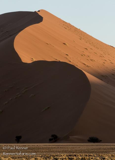 Sand Dunes in Namib Desert, Namibia-2045