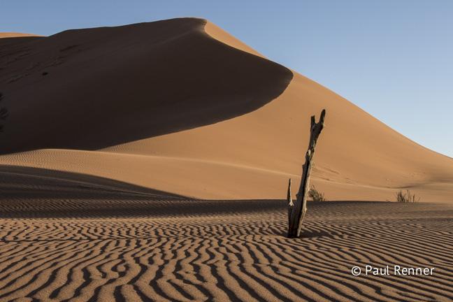 Sand Dunes in Namib Desert, Namibia-5185-2