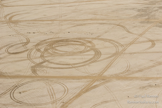 Vehicle Tracks on Beach in Namibia-2698